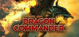 Divinity: Dragon Commander Game