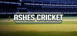 Download Ashes Cricket Game