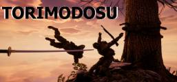 Torimodosu Game