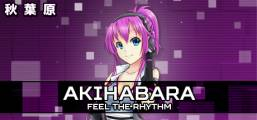 Akihabara - Feel the Rhythm Game