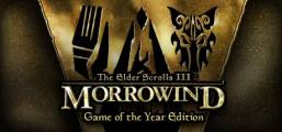 The Elder Scrolls III: Morrowind® Game of the Year Edition Game