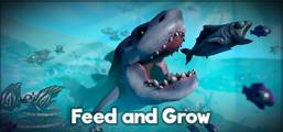 Feed and Grow: Fish Game