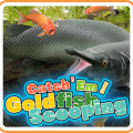Catch 'Em! Goldfish Scooping Game