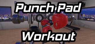 Punch Pad Workout