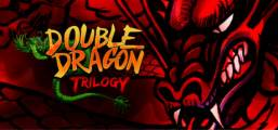 Double Dragon Trilogy Game