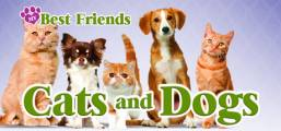 My Best Friends - Cats & Dogs Game