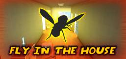 Fly in the House Game