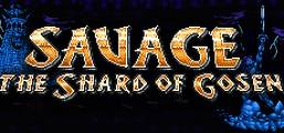 SAVAGE: The Shard of Gosen Game
