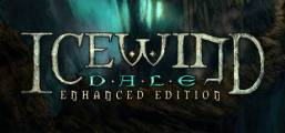 Icewind Dale: Enhanced Edition Game
