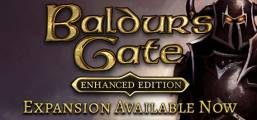 Baldur's Gate: Enhanced Edition Game