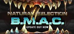 Natural Selection 2 Game