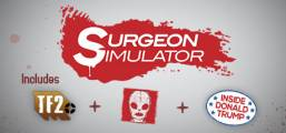 Surgeon Simulator 2013 Game